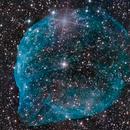 Sh2-308 - Dolphin Nebula,                                Chief
