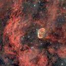 Crescent Nebula,                                Paolo Demaria