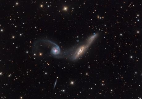 NGC 2992/2993,                                SCObservatory