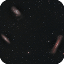 The Leo Triplet OSC M65 M66 and NGC 3628,                                Tam Rich