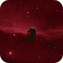 Horsehead Nebula,                                Paulo Cacella