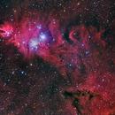 Cone and Fox Fur Nebula,                                flyingairedale