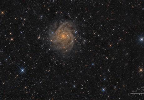 IC342,                                -Amenophis-