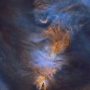 Cone Nebula, Christmas Tree Cluster in HaSHO Starless,                                Steven Miller