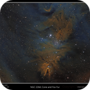 NGC 2264, Cone and Fox Fur,                                rflinn68