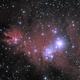 NGC 2264, Christmas Tree Cluster/Cone Nebula,                                David Dearden