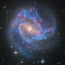 M83 redux,                                Lee Borsboom