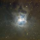 NGC 7023 The Iris Nebula,                                Komet