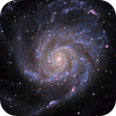 Messier 101 (The Pinwheel Galaxy),                                Alex Roberts