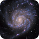 Messier 101 (The Pinwheel Galaxy),                                Alex Roberts