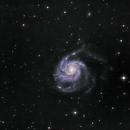M101,                                Sean Perkins