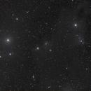 LBN541 in Cepheus,                                PVO