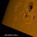 Sun 2021-05-08 WL AR 2822 (new spot),                                Sepp Käser