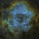 Nebulosa da Roseta,                                João Gabriel Fonseca Porto