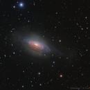 NGC3521,                                  Fluorine Zhu
