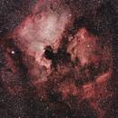 North America Nebula (NGC 7000) and Pelican Nebula (IC 5070),                                Dan Gallo