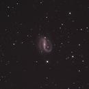 NGC 7479 in Pegasus,                                Nurinniska