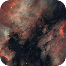 The Bird and the Wall (IC5070 and NGC7000), including starless version,                                Gary Lopez