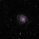 Messier 101,                                  Randy Roy