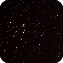Beehive Cluster (M44), ChristopherL