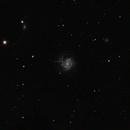 M61 with Supernova 2020jfo,                                Dominique Callant