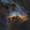 IC 5070 - The Pelican Nebula,                                pmneo