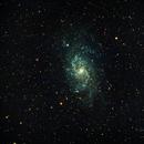 M33 The Triangulum Galaxy,                                Dale A Chamberlain