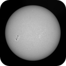 6parts Sun-Mosaic in Ca-K/H on Nov. 7th, 2020 with AR2781,                                Michael S.