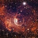 NGC 7635 - The Bubble Nebula,                                Timothy Martin & Nic Patridge