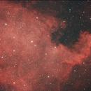North America Nebulae,                                Gardner D. Gerry