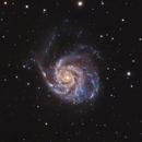 The Pinwheel Galaxy (M101),                                Mike H