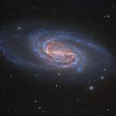 NGC 2903,                                tonyhallas