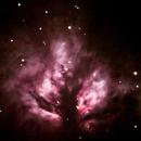 Flame Nebula,                                Nicholas Tedford