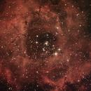 NGC2239 - Nebulosa Rosetta,                                Alessandro Pensato