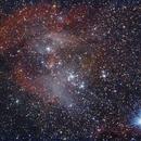 Nebulosa Lambda Centauri,                                Cosmonauta