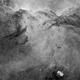 NGC 6188 - The fighting Dragons of  Ara,                                Sabine Gloaguen
