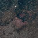North America Nebula - NGC7000 - July 2020,                                Jérémie