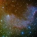 North America Nebula (NGC 7000) - Cygnus Wall detail,                                amsideribus
