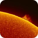 Solar prominence May 30th 2018,                                Thomas Klemmer