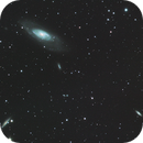 M106 and friends,                                Pam Whitfield