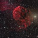 IC 443 Jellyfish,                                Francesco Wueest