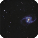 NGC 1365 Galaxy,                                Gerson Pinto