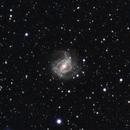 M83 (revisit),                                Jan Curtis