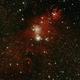 NGC2264,                                JoeRez