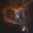IC 1805 Heart Nebula,                                Oliver Quas