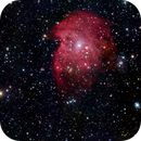 NGC 2174 (Monkey Head),                                Rob Fink