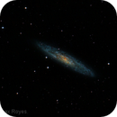 NGC253 in SCULPTOR,                                RAMON ESPAX