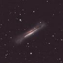 NGC-3628 The Hamburger Galaxy in Leo,                                Bob Scott