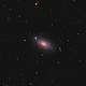 M63: Sunflower Galaxy,                                Ivan Nair