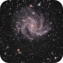 Fireworks Galaxy NGC6946 and cluster NGC6939,                                Neal Weston